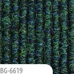 BG-6619